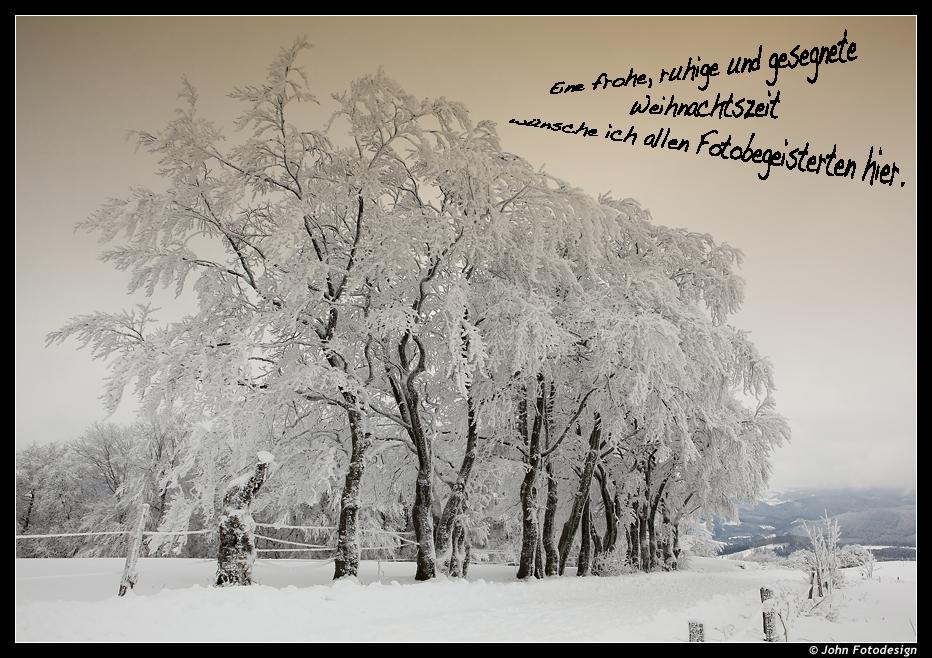 Ganz liebe Weihnachtsgrüße... Foto & Bild | karten und kalender ...