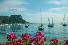 Gardasee Bardolino, Hafen
