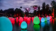 Garden by the bay (IV)