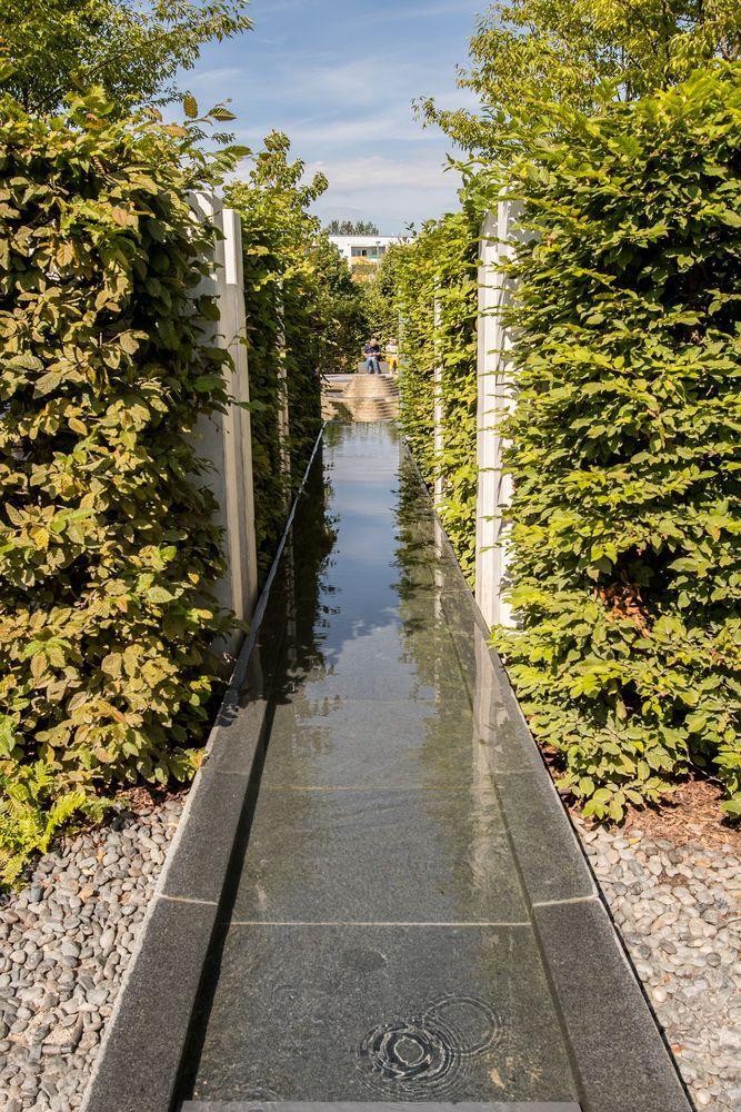 Garden of the Mind - Sichtachse -1-