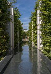 Garden of the Mind - Sichtachse -2-