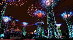 Gardens by the Bay 5