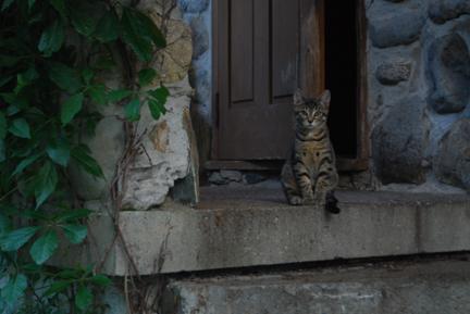 Gardien de la demeure familiale