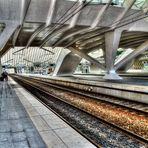 ...Gare de Guillemins