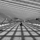 Gare de Liege-Guillemins (1)