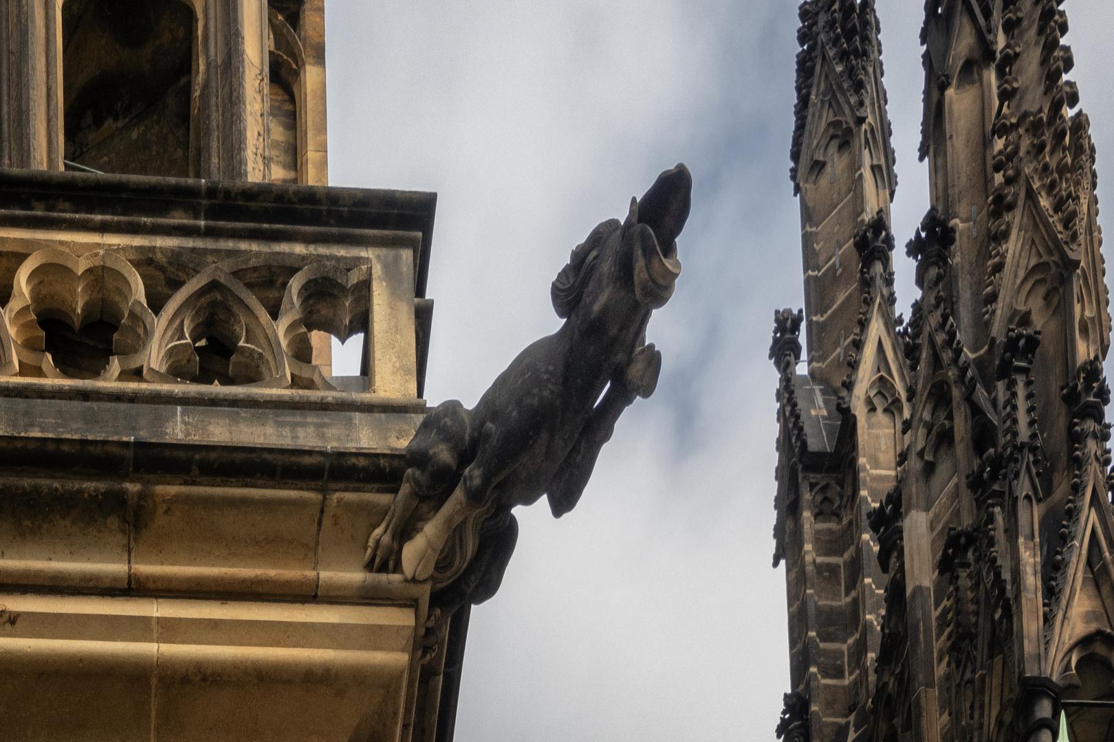 Gargola doccione, Basilica di San Vito, Praga