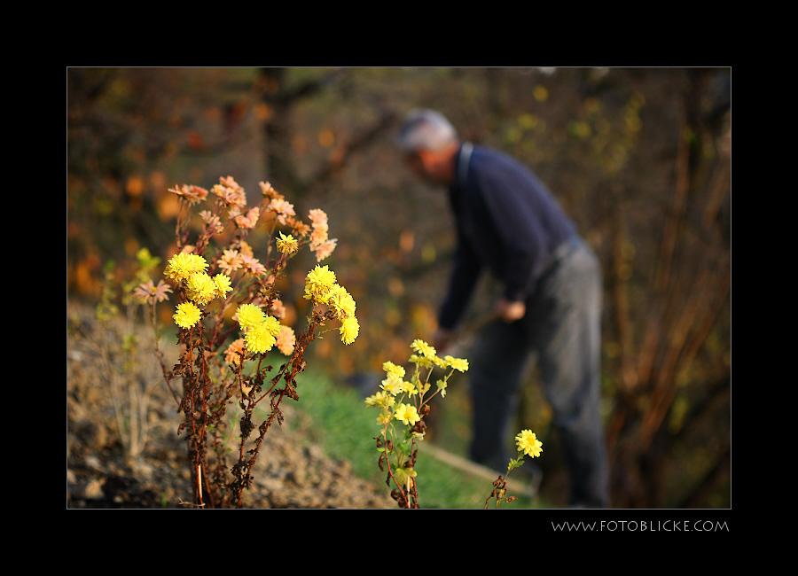 Garten Arbeiter #3