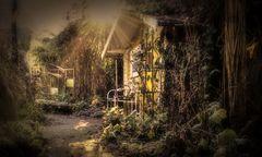 Garten-Blues - heute mit etwas Sonne und Frost