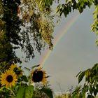 Garten - Hoffnung - Regenbogen