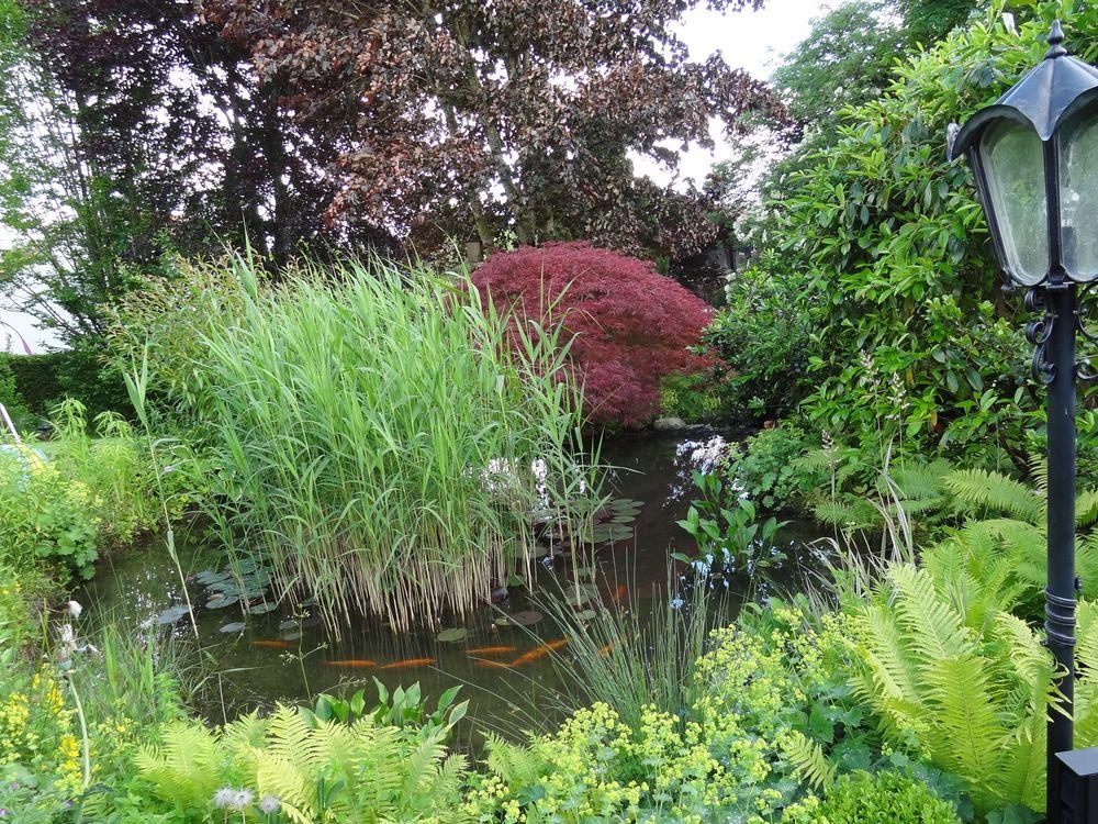 Garten Idylle