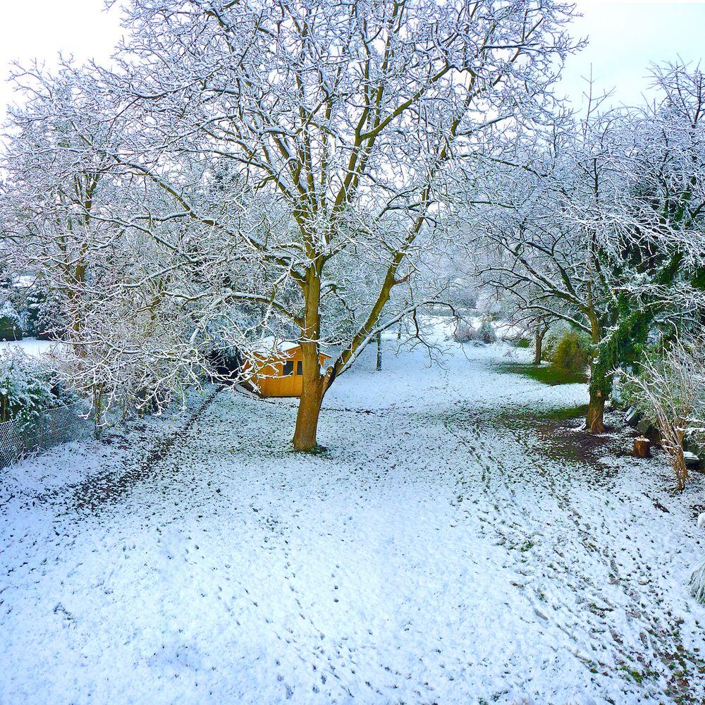 garten im winter foto bild jahreszeiten winter natur bilder auf fotocommunity. Black Bedroom Furniture Sets. Home Design Ideas