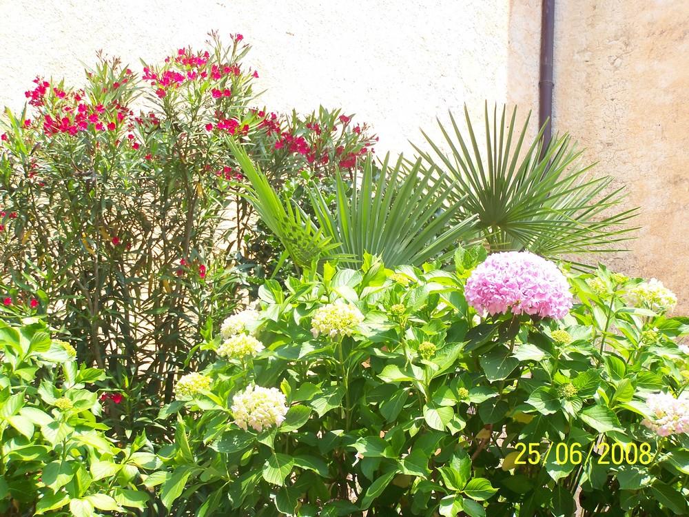 Garten in Italien