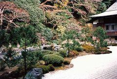 Garten in Kamakura (MW 1997/2  - jm)