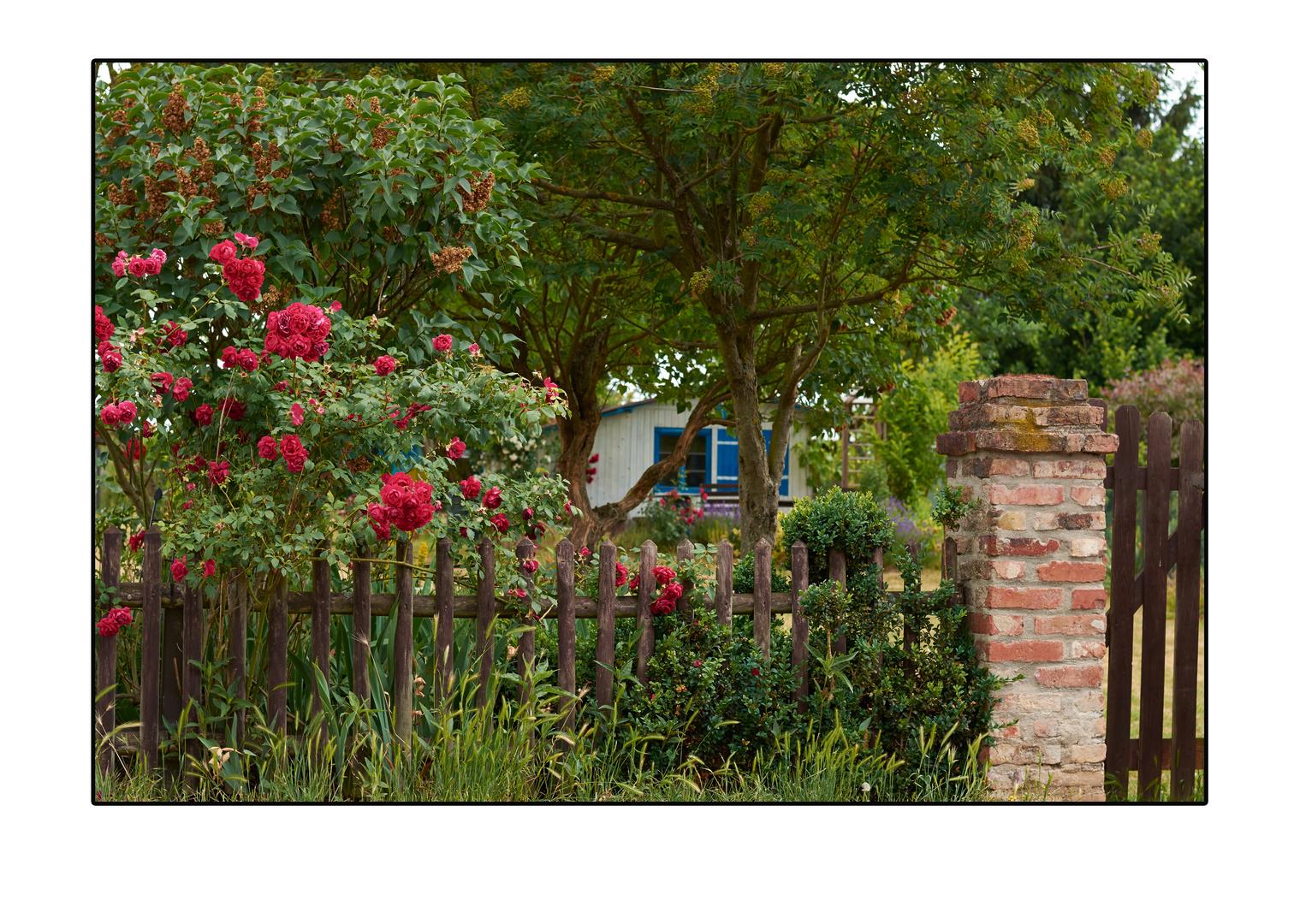 Garten Landschaft Foto Bild Landschaft Garten