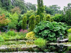 Garten Spiegelung