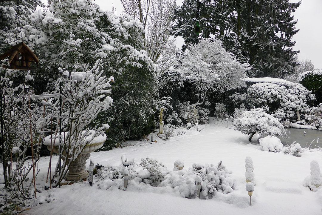 Garten um 14,30 Uhr