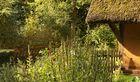 Garten unter'm Reetdach