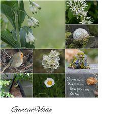 Garten-Visite