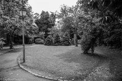 Gartenanlage eines Weingutes in Schweigen