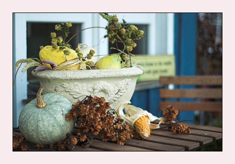 Gartendeko im winter foto bild stillleben zuf llige arrangements unser garten bilder auf - Gartendeko winter ...