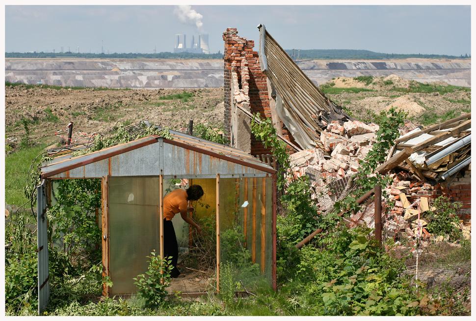 Gartenfreuden am Ende der Welt
