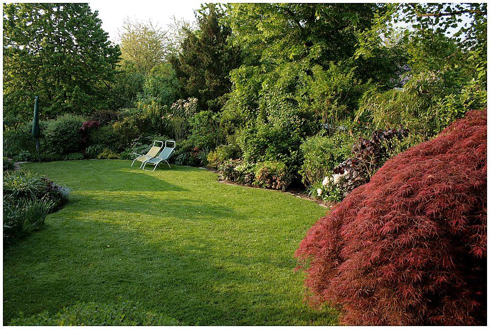 Gartenimpression (2)