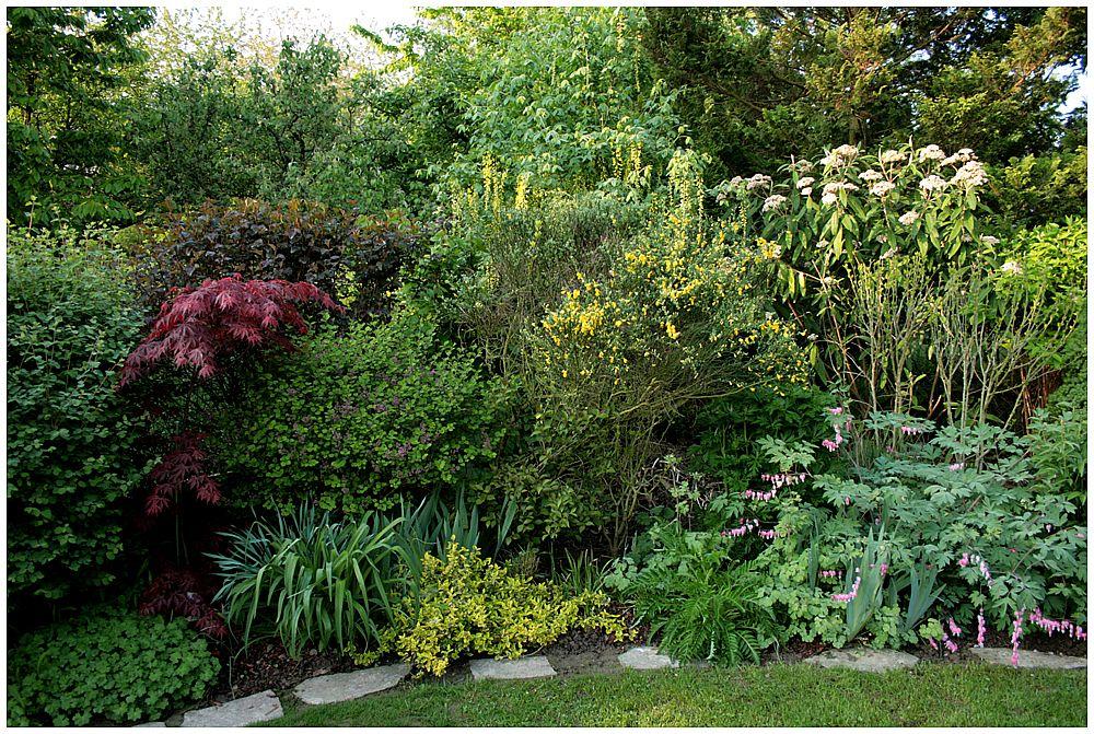 Gartenimpression (4)