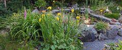 Gartenteich und Randbepflanzung als breites Bild
