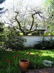 Garten_Wilhelm_Busch 002