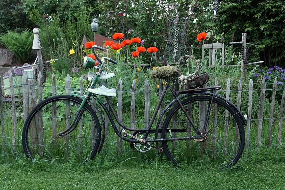 Gartenzeit