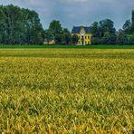 Garzweiler 2012 oder die letzte Ernte