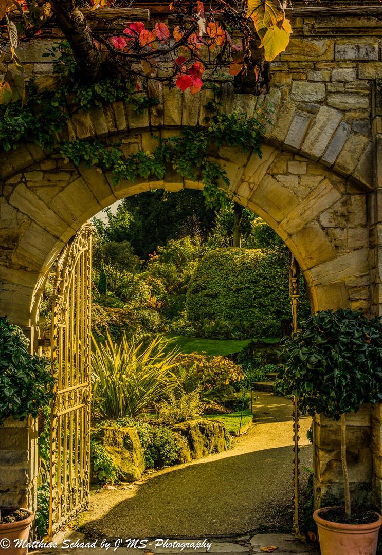 Gate to Eden
