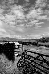 Gates Edge.