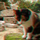 Gato y rocas (3D)
