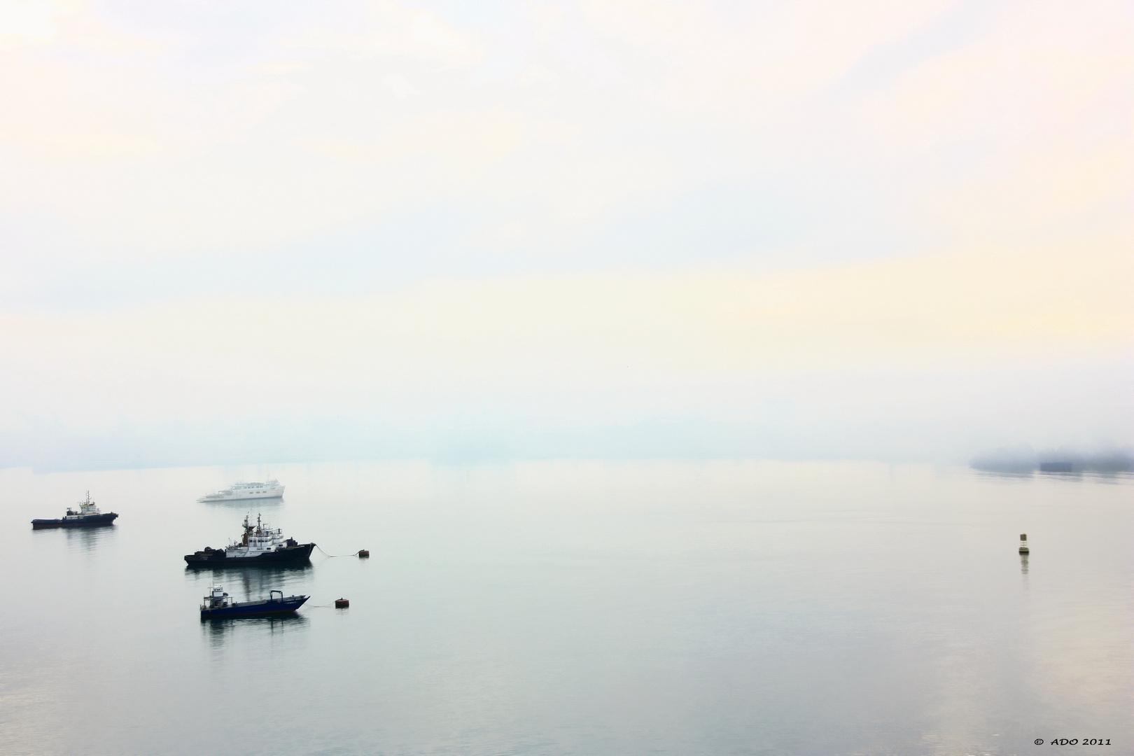 Gatun Lake at Dawn