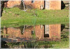 Gebäude im Wasser
