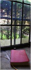Gebetsende am Fenster zum Domherrenfriedhof