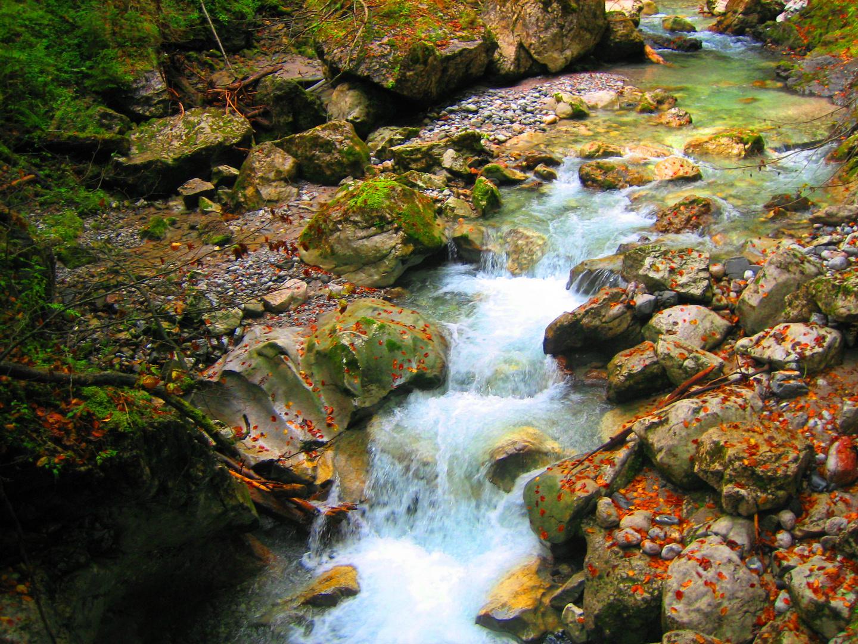 Gebirgsbach im Herbst
