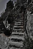 Gebrauchsspuren an Treppen und Wegen aus uralter Zeit