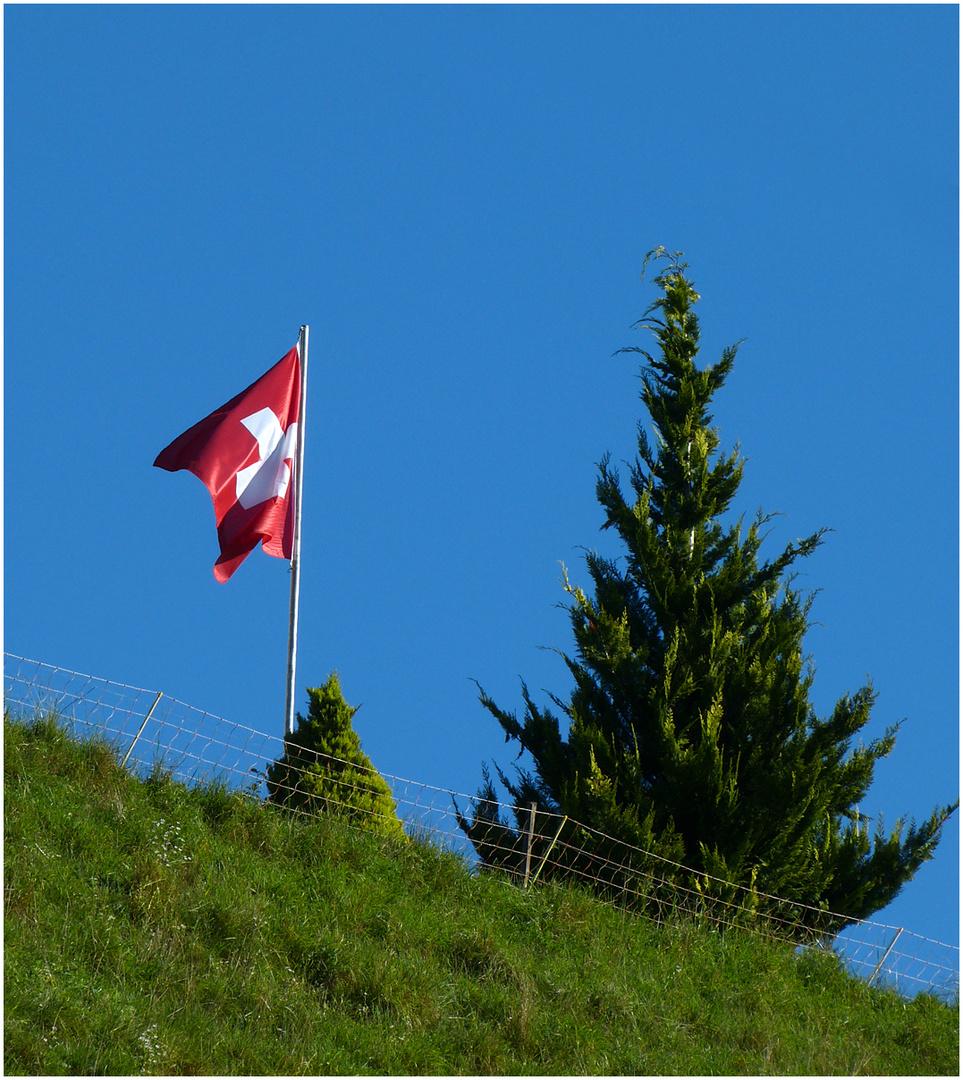 Geburtstag Foto Bild Natur Sonstiges Fahne Bilder Auf