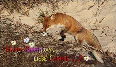Geburtstag ... Geburtstag ...!