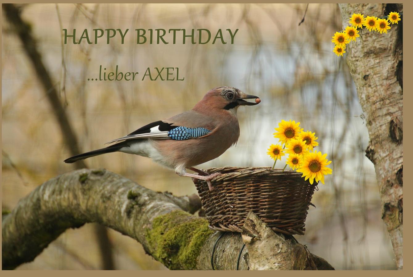 Geburtstags-vogi für Axel :-)