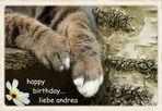 Geburtstagsgrüße für Andrea