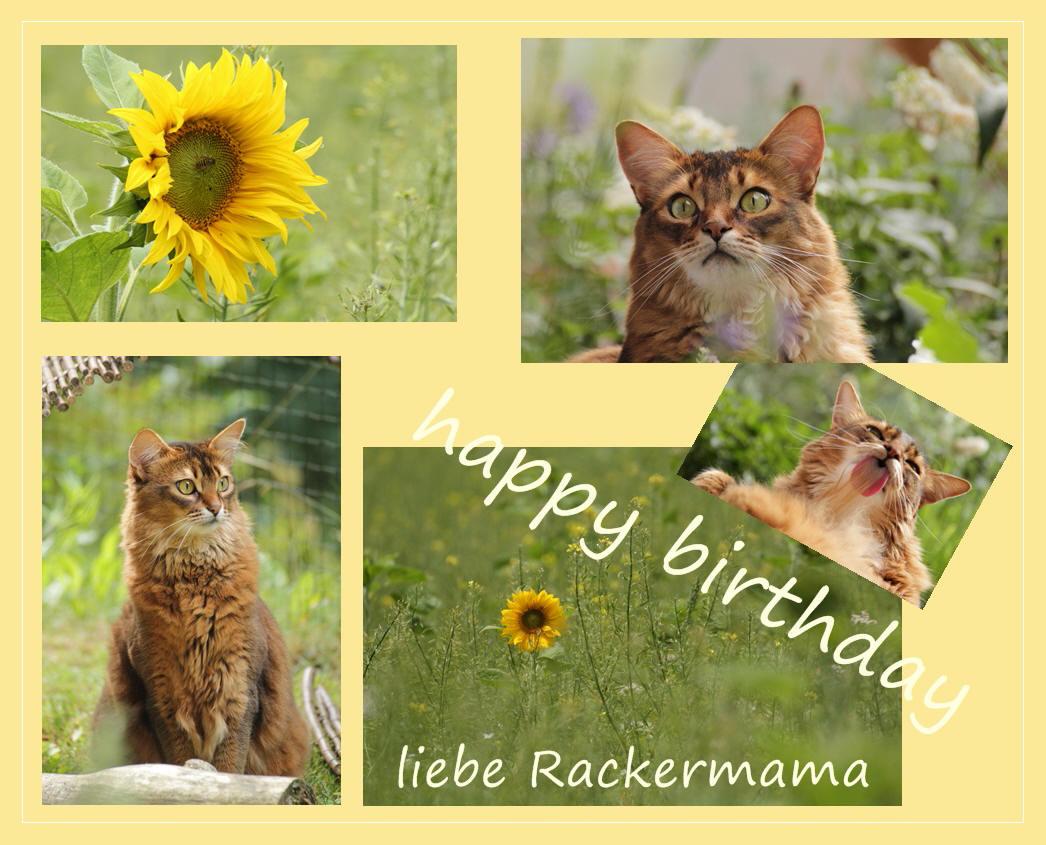 Geburtstagsgrüße für Gisela