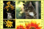 Geburtstagsgrüße für Petra