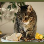 Geburtstags_Shooting für Steffen
