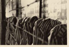 Gedenkstätte_Auschwitz