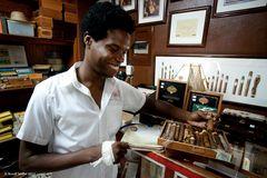 Gefälschte Zigarren