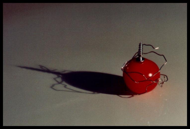 gefangene tomate