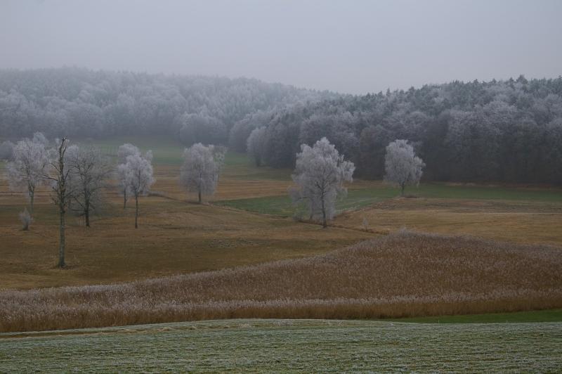 Gefrohrener Nebel